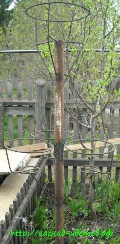 Петуниевые деревья своими руками фото