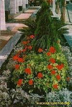 декоротивное оформление бордюра (Кипр)
